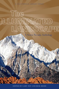 Illuminated Landscape book cover